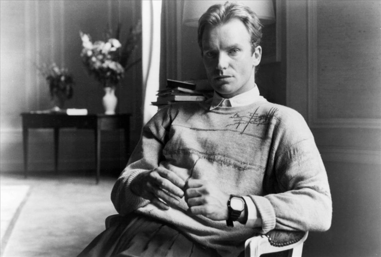 Sting 33 Celebrities You Didn't Know Used To Be Teachers
