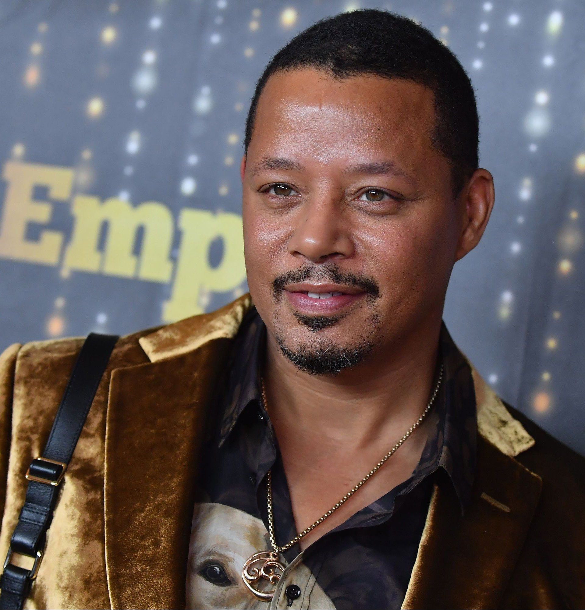 terrance howard e1561110569107 20 Celebrities You Didn't Know Had Committed Crimes
