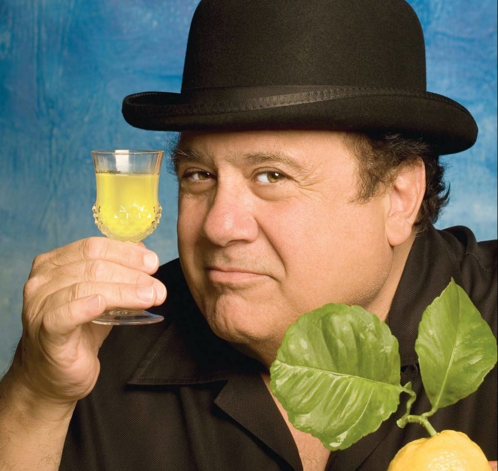 2d7676ece36a75198fecd6b215845c07 e1602498083867 20 Things You Might Not Have Realised About Danny DeVito