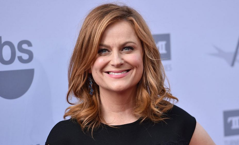 Amy Poehler Net Worth Where Are The Cast Of Mean Girls Now?