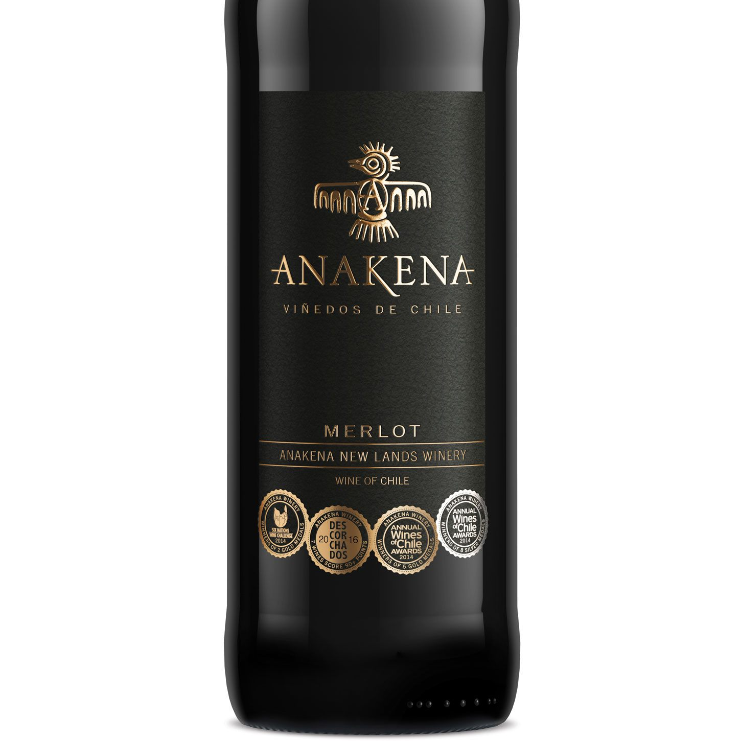 Product.Chile .Anakena.Merlot Iceland's £5 Pizza And Wine Deal Is Back By Popular Demand