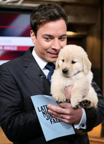 Screenshot 2019 02 20 at 09.56.30 21 Things You Didn't Know About Jimmy Fallon