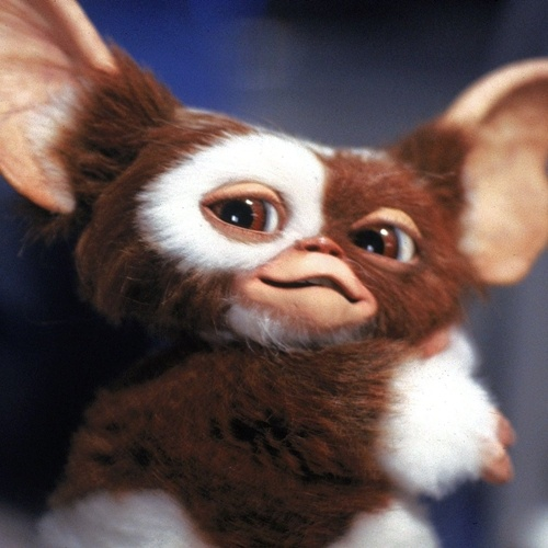45 10 Things You Might Not Have Realised About Gremlins