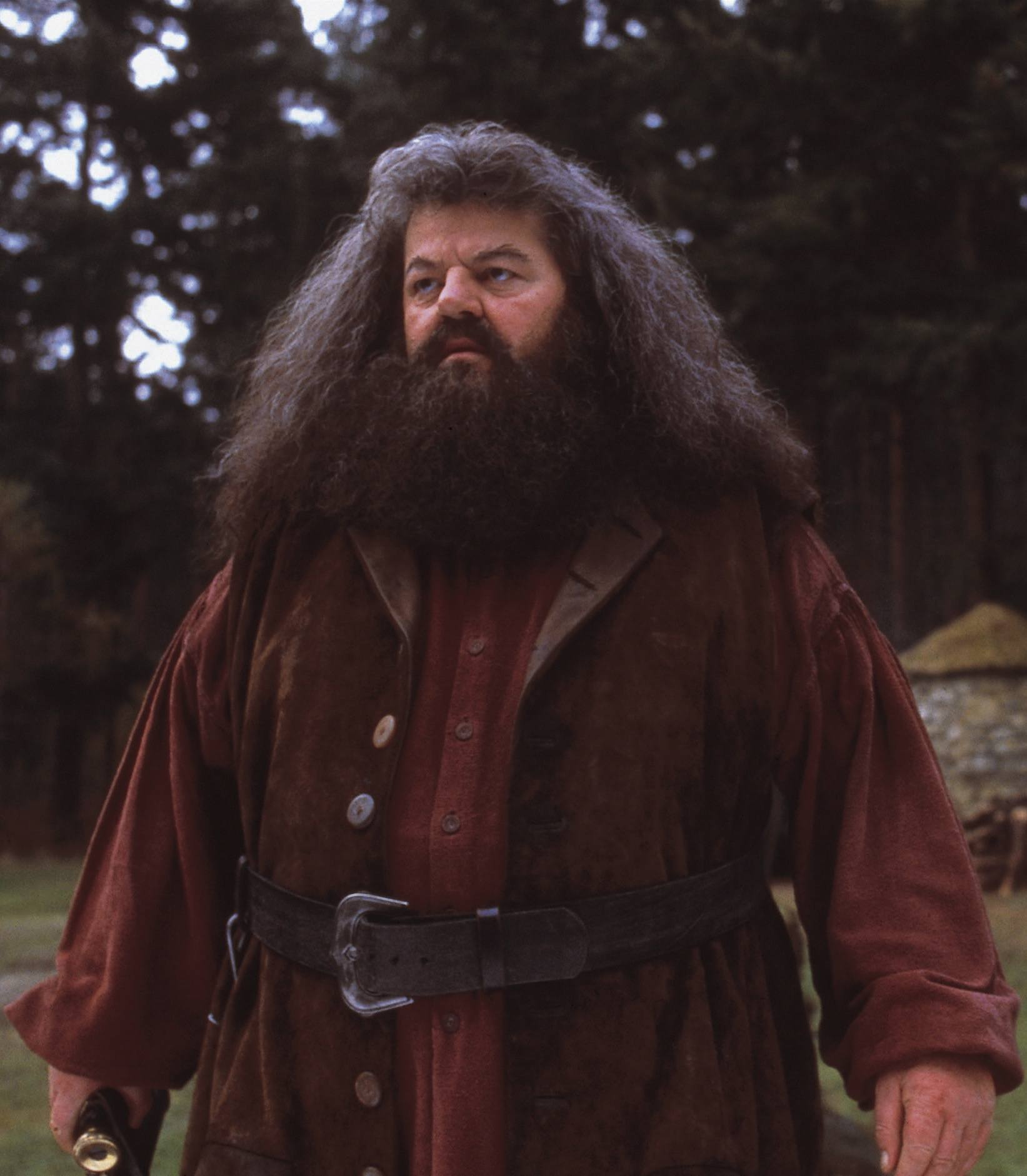 Robbie Coltrane as Rubeus Hagrid in the Harry Potter series