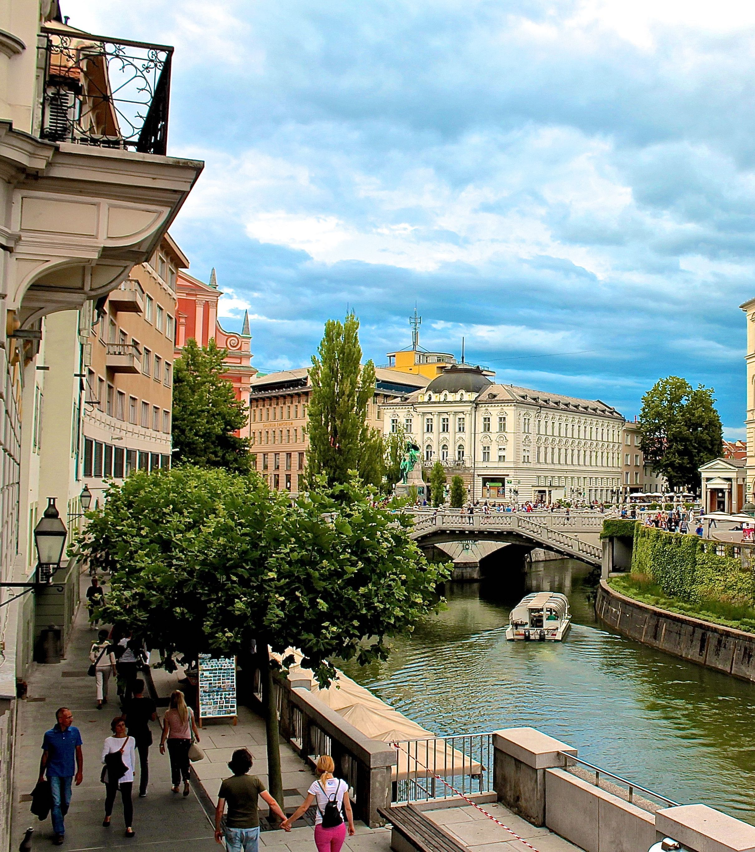 Slovenia Ljubljana Photography 2 Woman Cuts Own Hand Off With Circular Saw 'In Order To Claim Insurance Money'