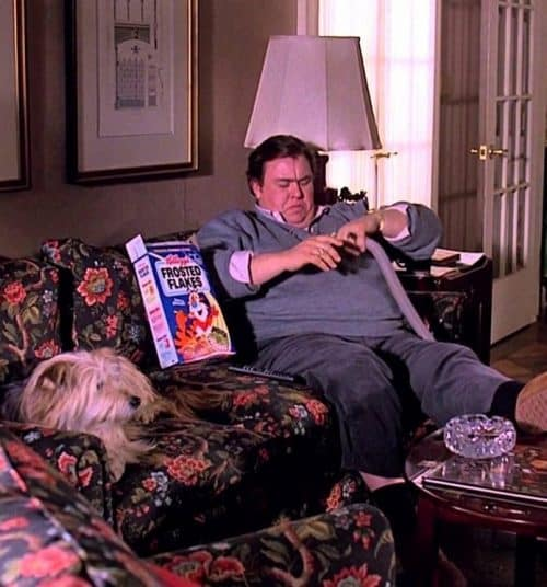 12 3 e1571907417247 10 Things You Didn't Know About Uncle Buck