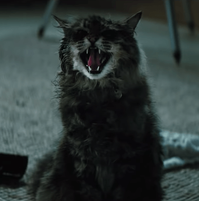 Pet Sematary Church 10 Things You Didn't Know About Pet Sematary (2019)