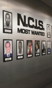 Screenshot 2019 04 03 at 09.29.15 27 Things You Didn't Know About NCIS