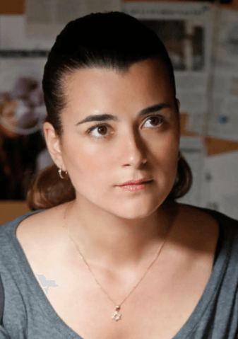 Screenshot 2019 04 03 at 10.13.48 27 Things You Didn't Know About NCIS
