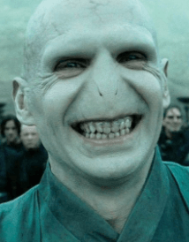 Screenshot 2019 04 11 at 13.57.36 30 Things You Didn't Know About Harry Potter and The Deathly Hallows