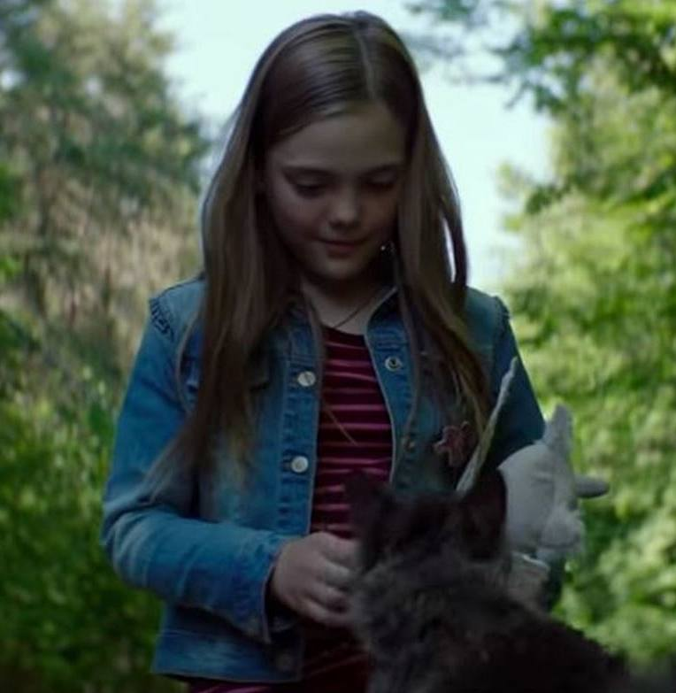pet sematary 2019 10 Things You Didn't Know About Pet Sematary (2019)