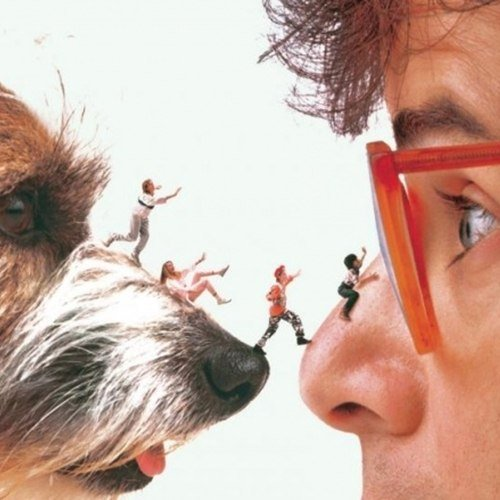 107 10 Things You Might Not Have Realised About Honey I Shrunk The Kids