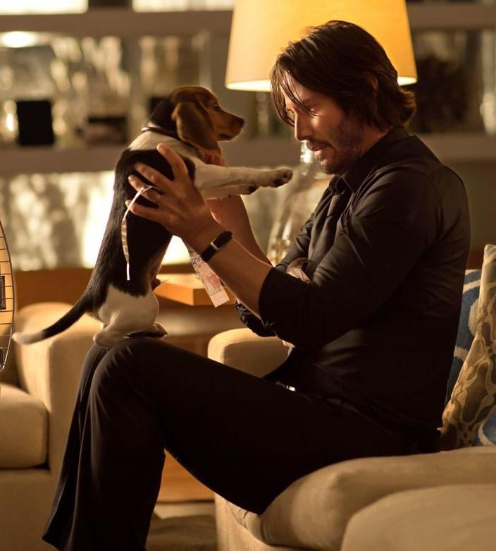 5cdc5f370b041.image 10 Things You Didn't Know About The John Wick Films