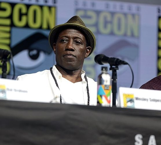 800px Wesley Snipes 41969097750 e1616509217552 19 Things You Might Not Have Realised About Wesley Snipes