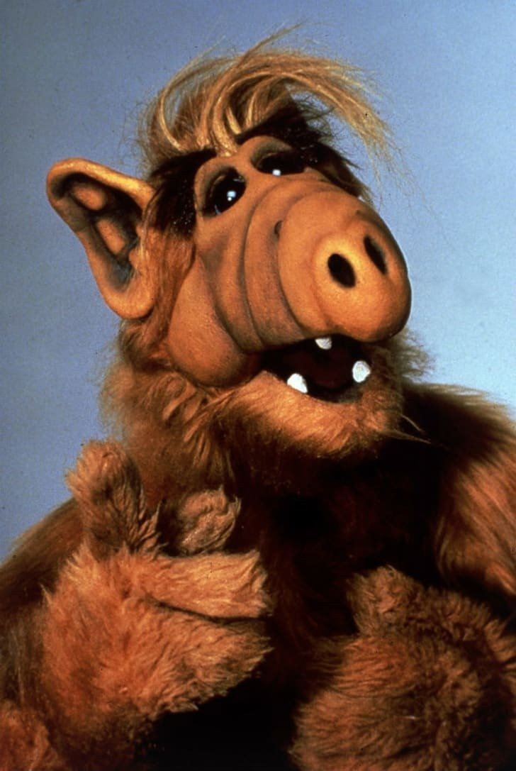 ALF 10 Kids' TV Moments That Would Never Air Now