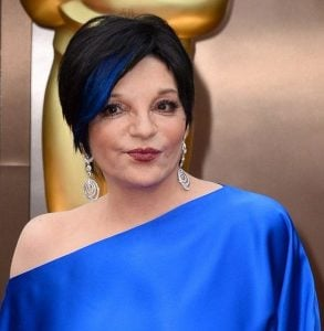 Liza 15 e1556784856597 10 Things You Didn't Know About Liza Minnelli