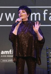 Liza 3 10 Things You Didn't Know About Liza Minnelli