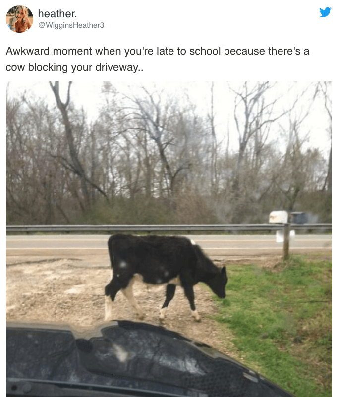 Screen Shot 2019 05 16 at 14.37.20 17 Memes You Can Relate To If You Live In A Small Town