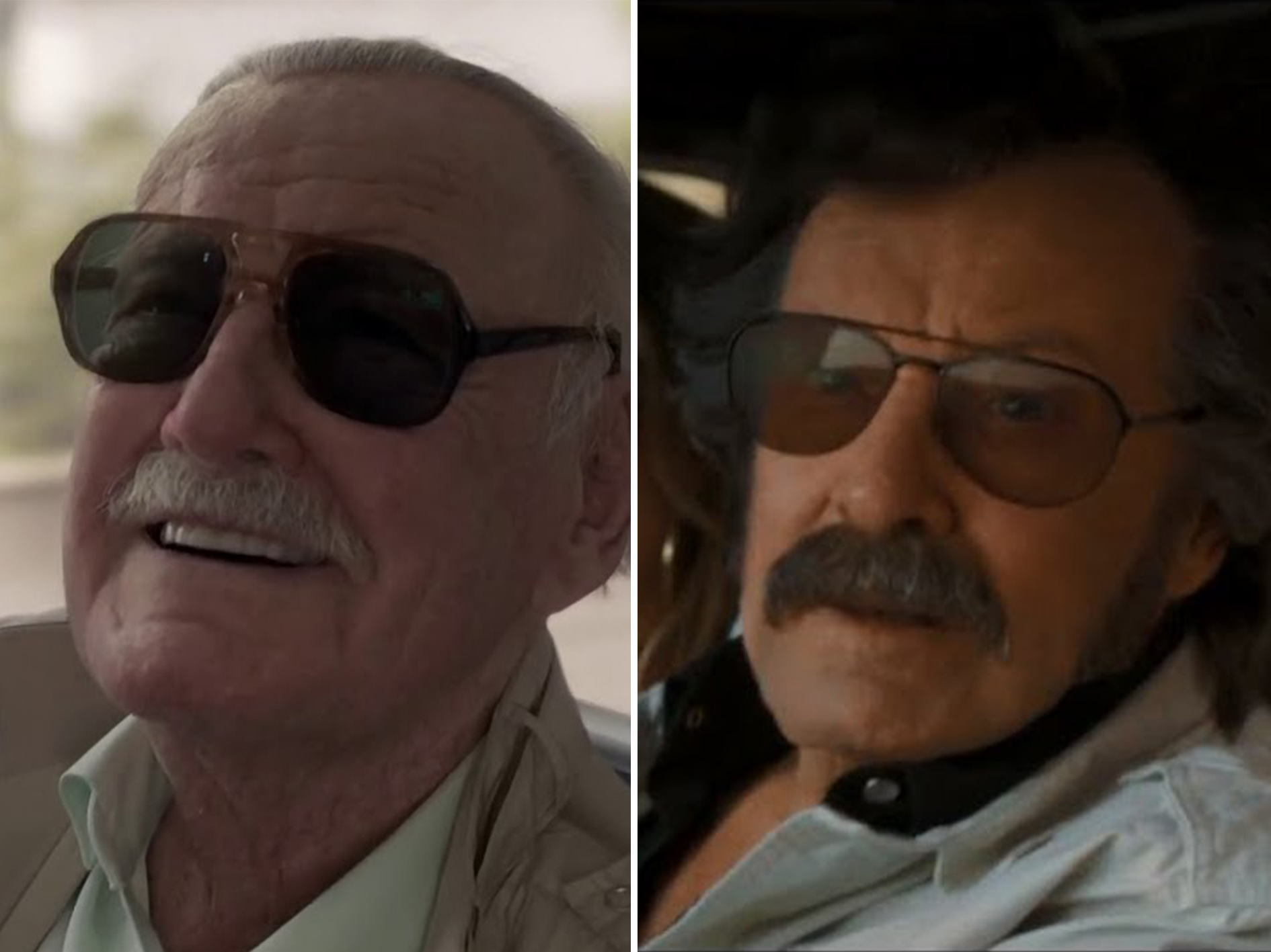 Stan Lee 2 25 Things You Didn't Know About Avengers: Endgame