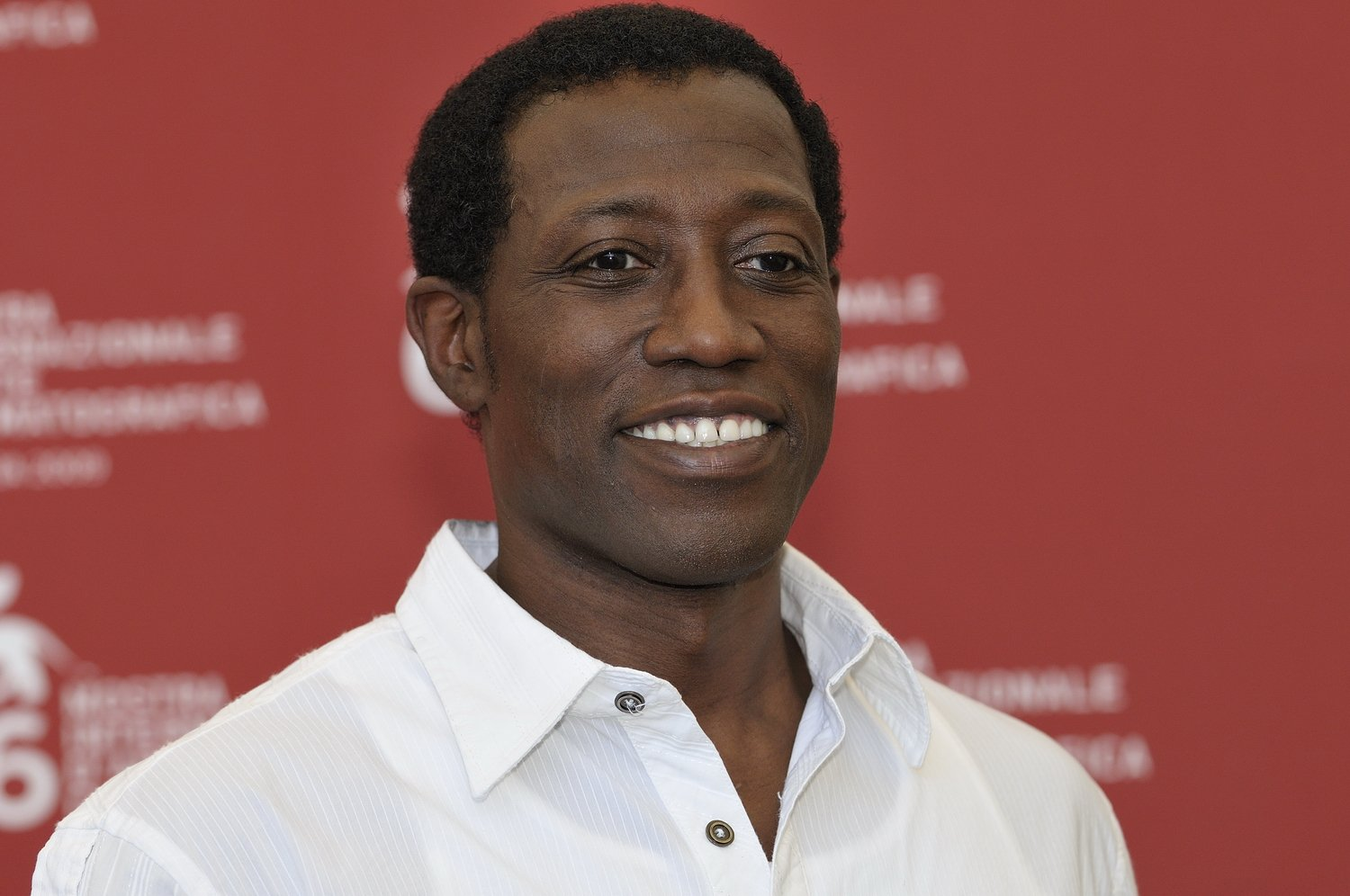 Wsley Snipes 2009 color 19 Things You Might Not Have Realised About Wesley Snipes