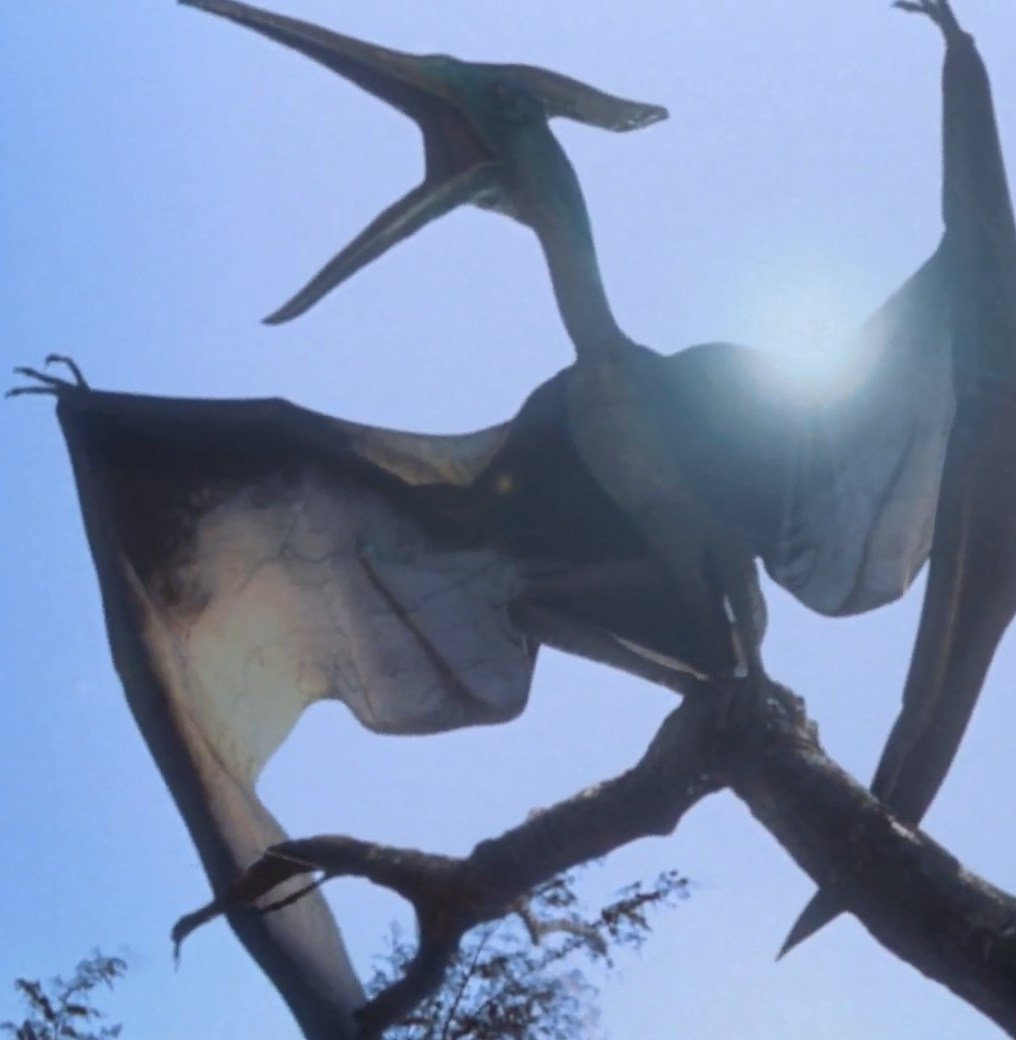 pteranodon01 25 Things You Probably Missed In Jurassic Park