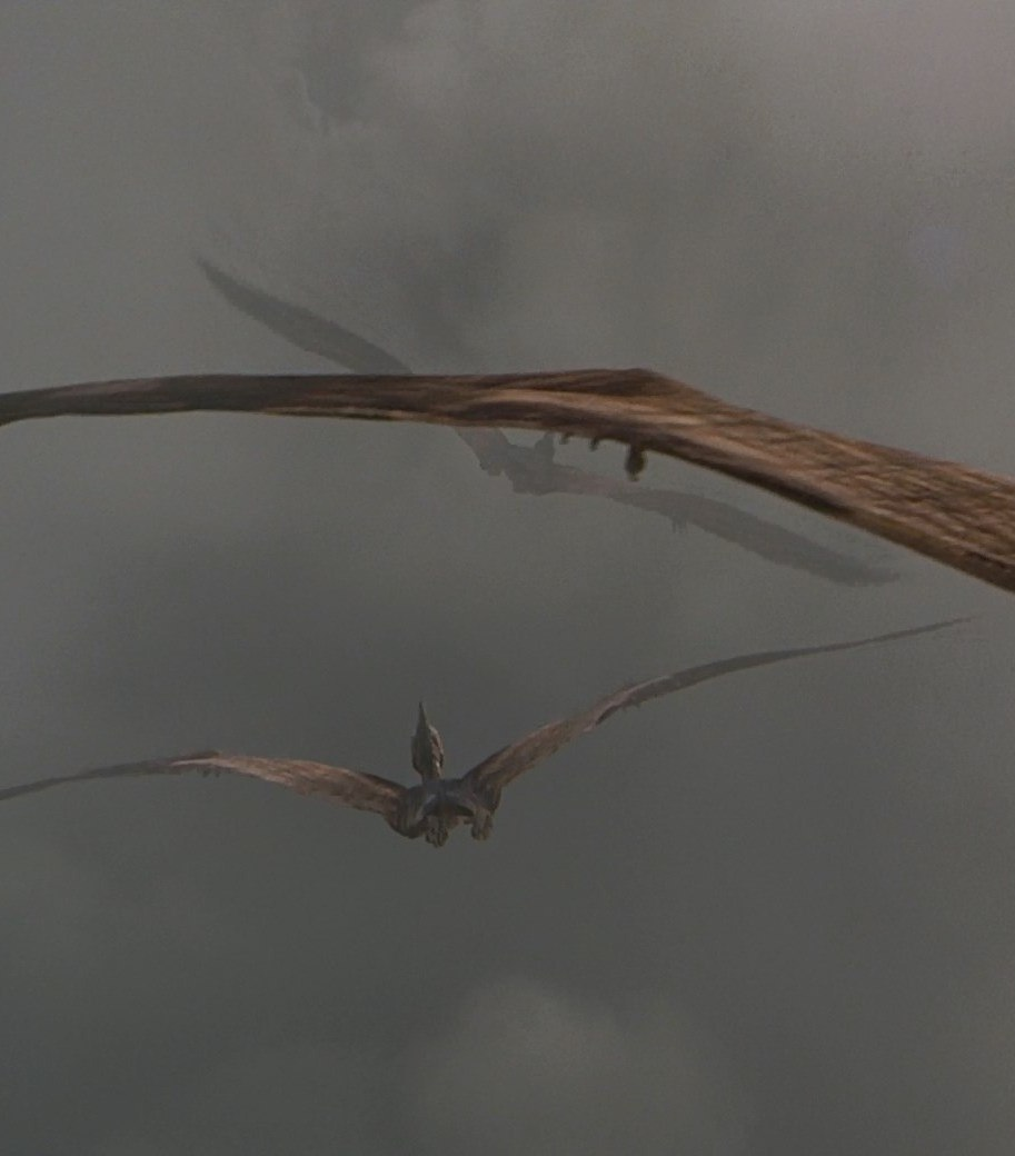 pteranodon04 25 Things You Probably Missed In Jurassic Park