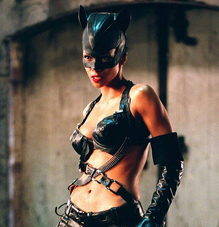 rs 1024x759 180424132515 1024 halle berry catwoman e1581518910251 20 Embarrassing Movie Roles Actors Just Can't Escape