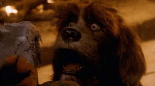 11dog2 12 Incredible Facts You Never Knew About Jim Henson's The Storyteller!