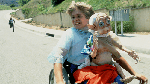Jade Calegory in a wheelchair with Mac on his lap
