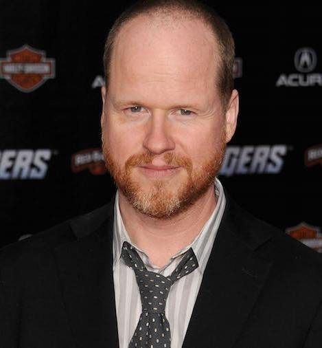 joss whedon the avengers premiere 2012 gi 24 Things You Didn't Know About The X-Men Films