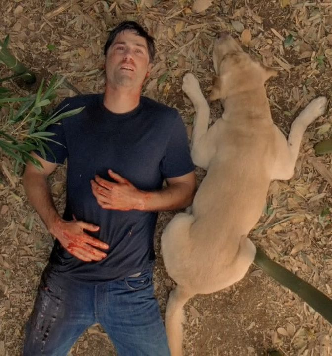 lost final episode 1 20 Film Scenes That Nearly Killed The Actor