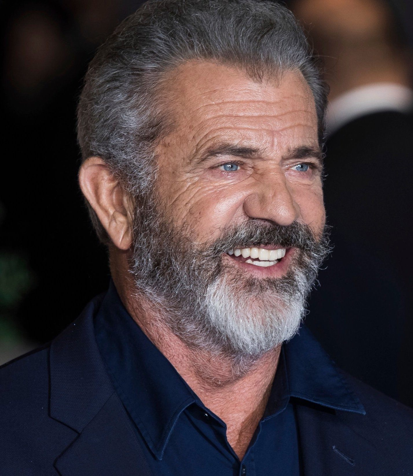 mel gibson 20 Celebrities You Didn't Know Had Committed Crimes