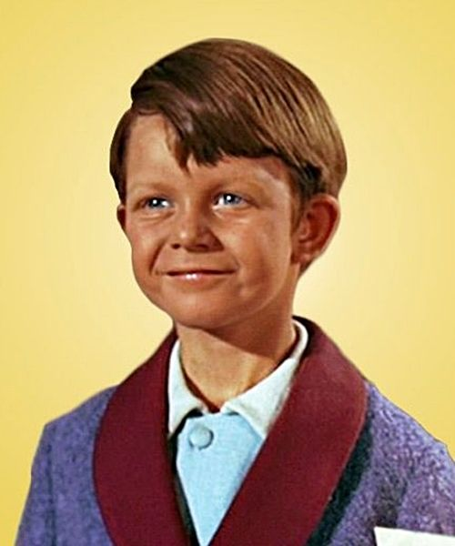 5 17 8 Child Stars Who Tragically Died Young