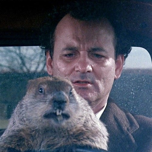 8 6 20 Things You Might Not Have Realised About Groundhog Day