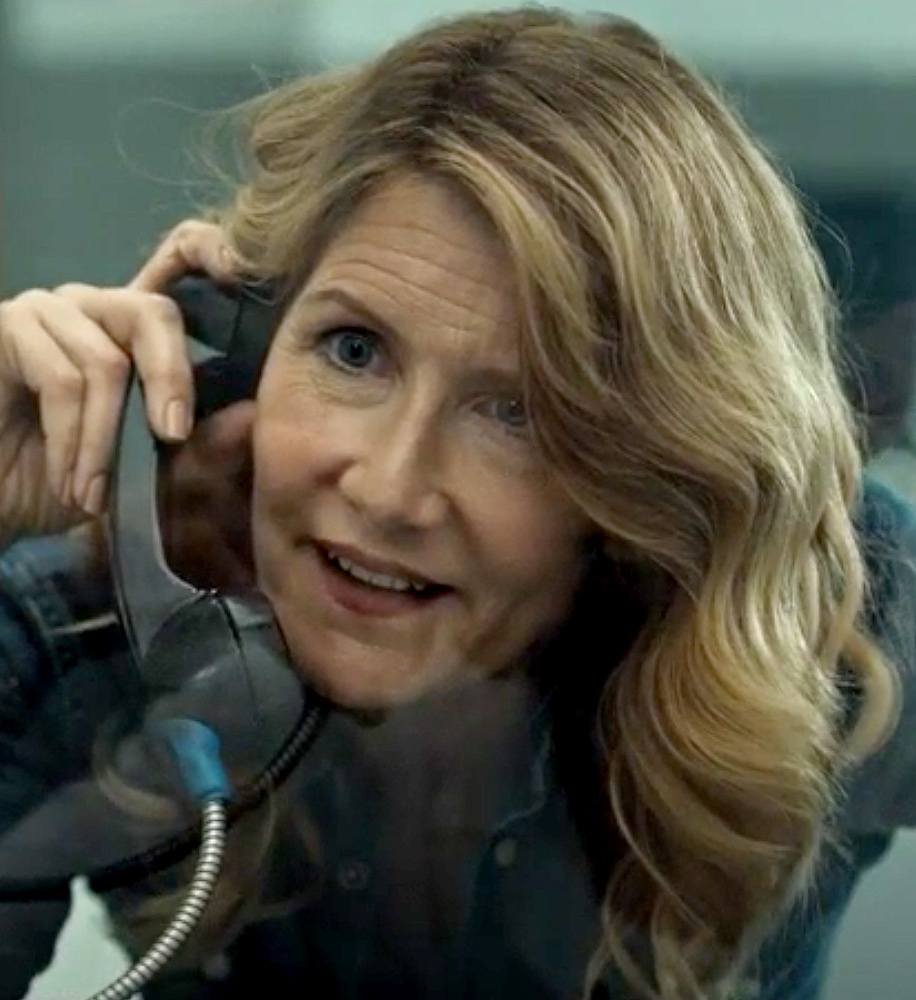 16 13 25 Things You Never Knew About Laura Dern