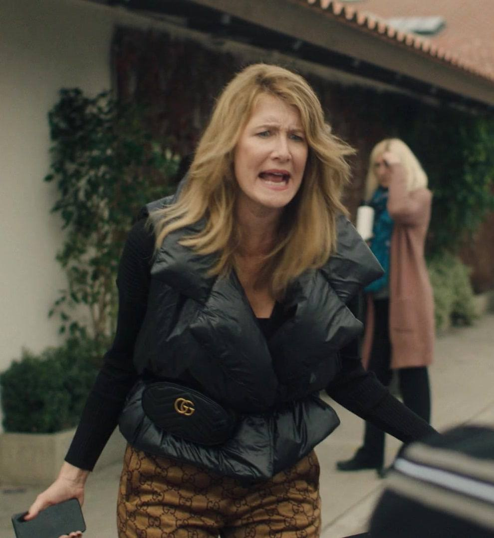 2 2 13 25 Things You Never Knew About Laura Dern