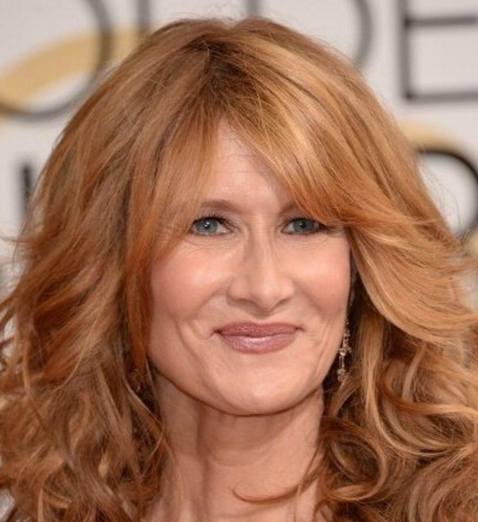 6 3 5 25 Things You Never Knew About Laura Dern