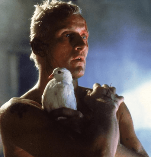 6Runner 12 Of The Best Sci-Fi Movies Of The 80s - Which Is Your Favourite?