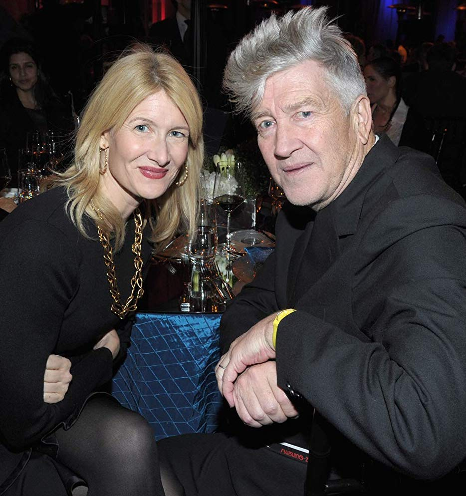 9 2 9 25 Things You Never Knew About Laura Dern