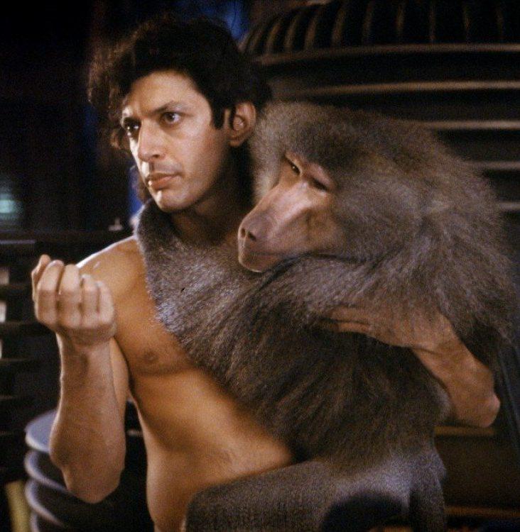 jeff 5 e1565959299729 20 Things You Never Knew About Jeff Goldblum