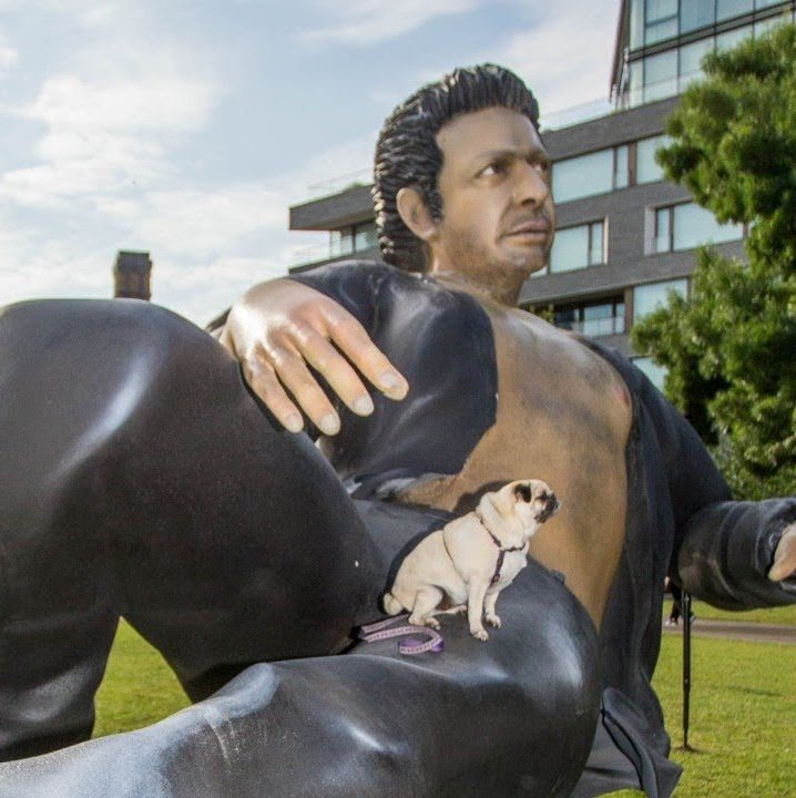 maxresdefault 1 6 20 Things You Never Knew About Jeff Goldblum