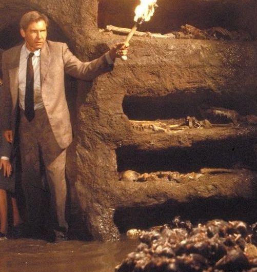 10. 2000 Rats Were Specially Bred For The Venetian Catacombs Scene 20 Things You Didn't Know About Indiana Jones and the Last Crusade