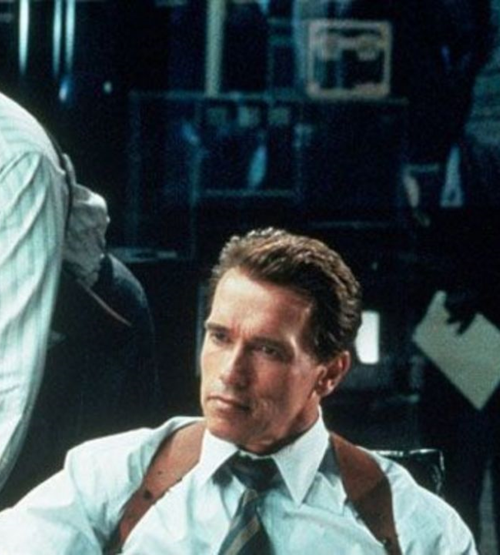 10Contract 20 Things You Never Knew About True Lies