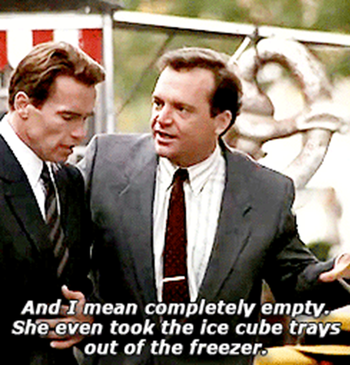 12Trays 20 Things You Never Knew About True Lies