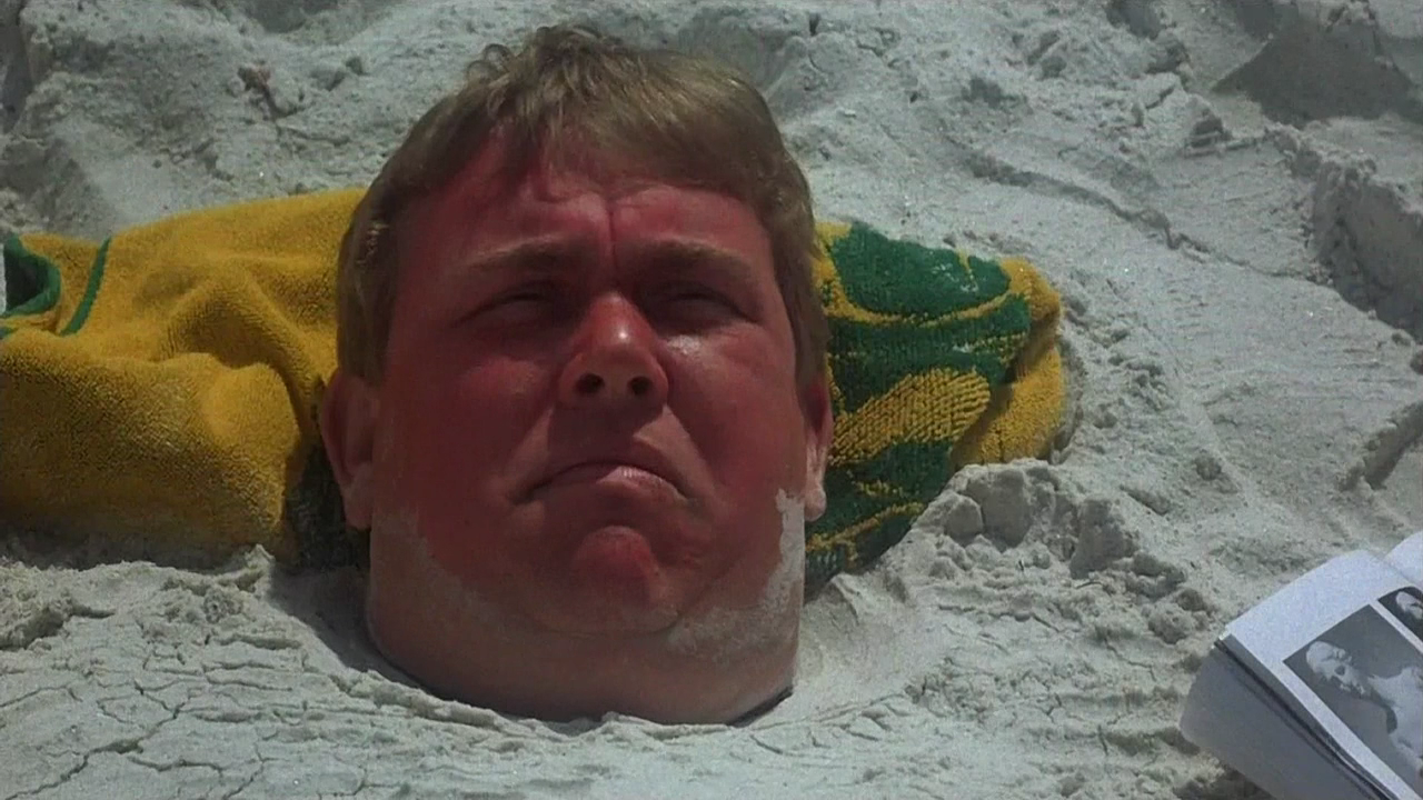 15 3 40 Things You Probably Didn't Know About John Candy