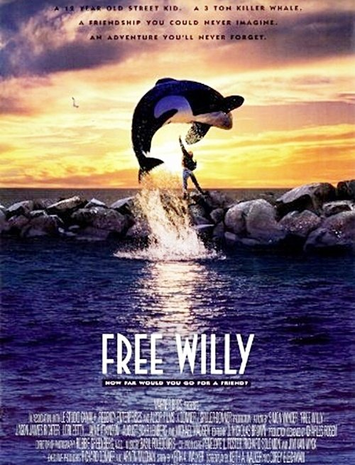 2 8 Remember Jesse From Free Willy? Here's What He Looks Like Now
