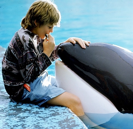 4 6 Remember Jesse From Free Willy? Here's What He Looks Like Now