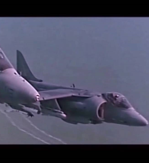 4Harriers 20 Things You Never Knew About True Lies