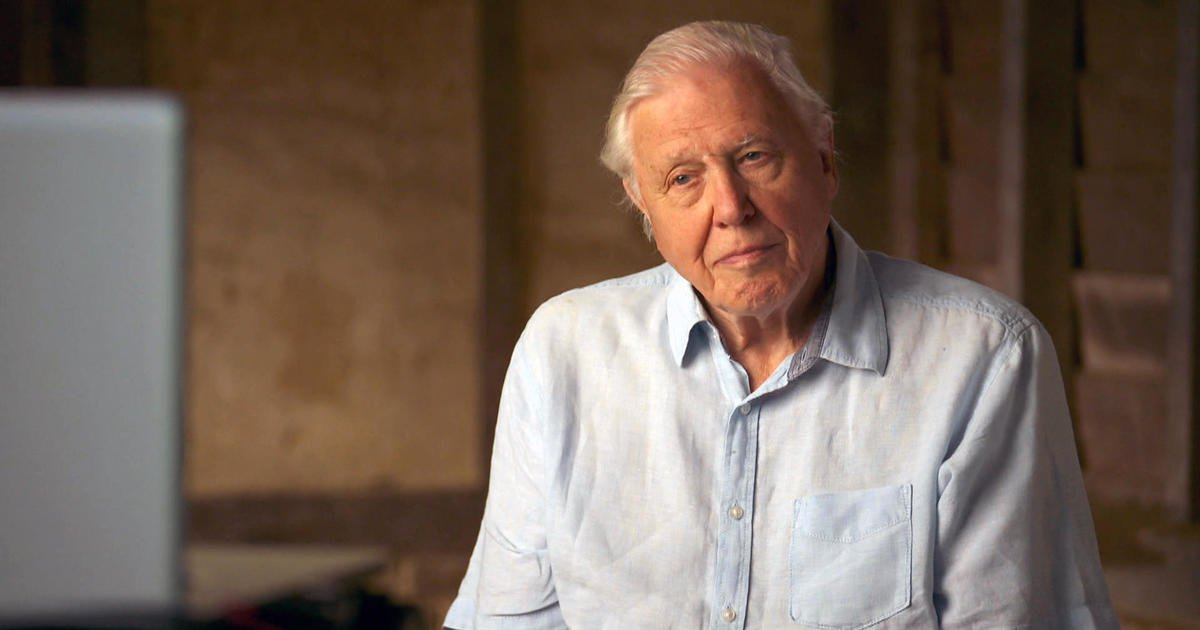 gen12 70 Years In The Field: Everything You Never Knew About Sir David Attenborough