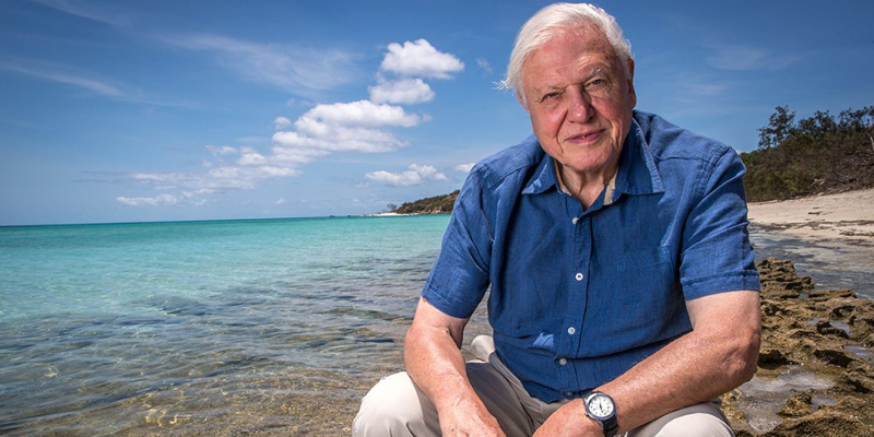 gen4 70 Years In The Field: Everything You Never Knew About Sir David Attenborough